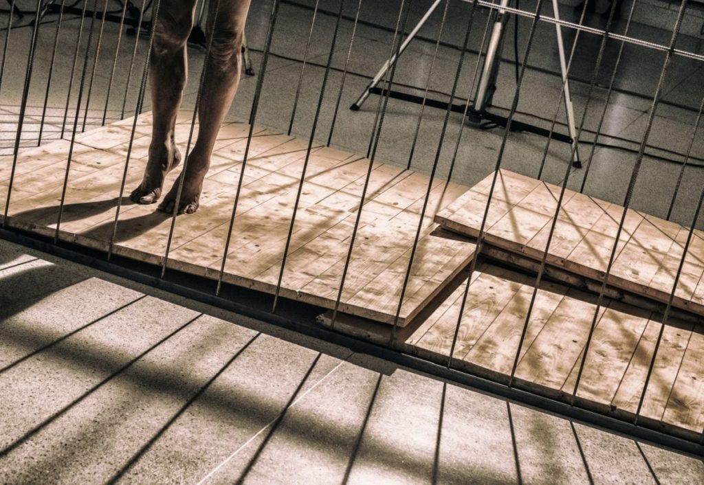 Min Tanaka: Locus Focus, v rámci výstavy Keiiči Tahara: Fotosyntéza 1978 – 1980, Veletržní palác, Praha, 2017, performer Min Tanaka